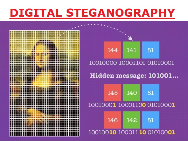 Hiding Data in Image using Steganography